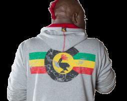 vaprwear-colorado-rasta-flag-hoodie-grey-mens